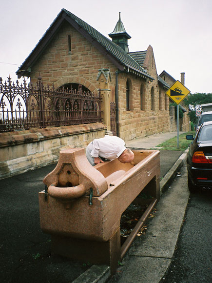 bronte-horse-trough-xw.jpg