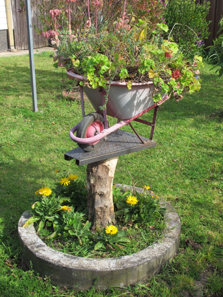 canley-vale-garden-tree-wheelbarrow-xg.jpg