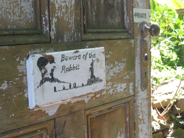 dangar-island-sign-rabbit-beware-usg.jpg