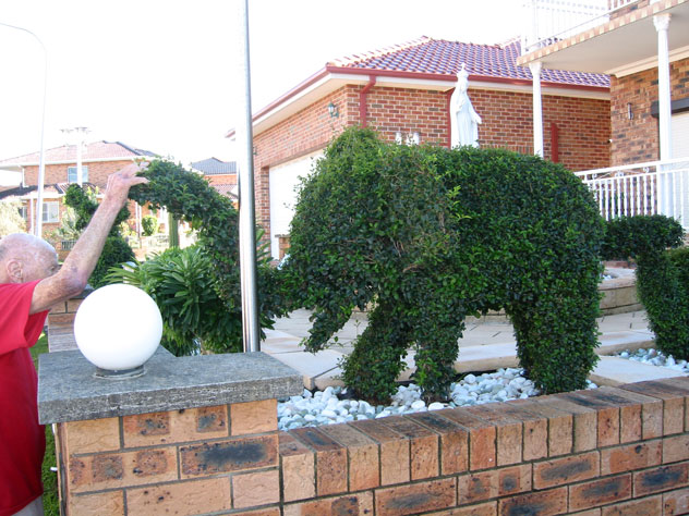 fairfield-west-shrubs-elephants-ush.jpg
