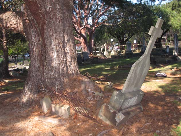fairlight-garden-trees-against-graves-2-n.jpg