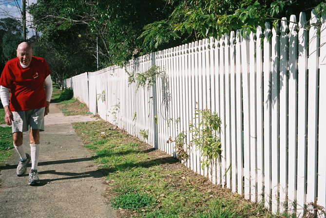 merrylands-west-fence-paling-uf.jpg
