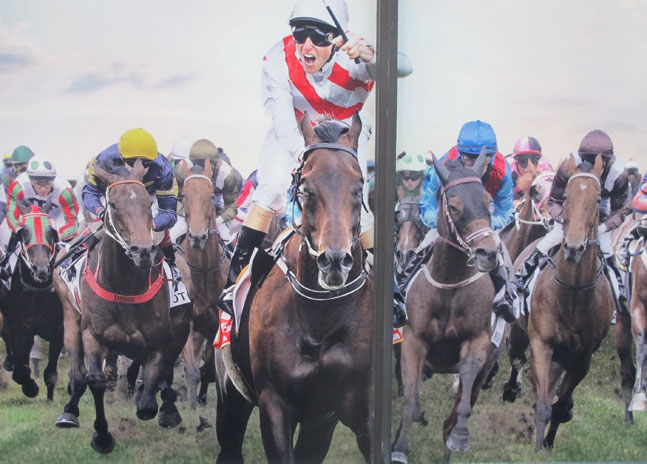 north-sydney-horse-race-1-up.jpg
