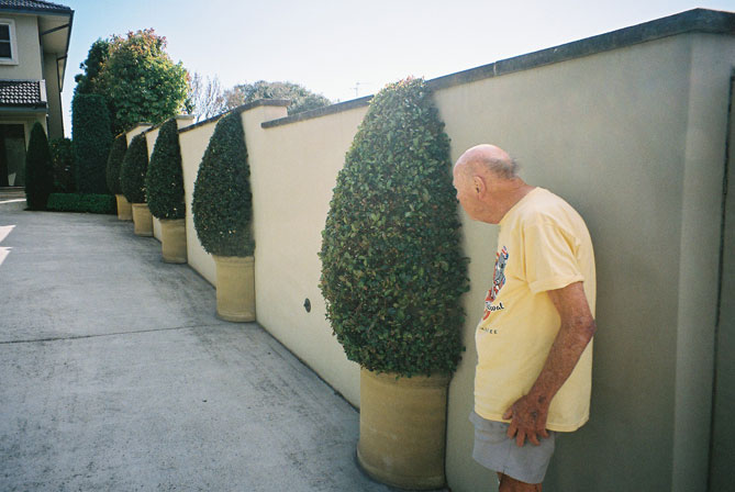 northbridge-shrub-and-wall-ush.jpg