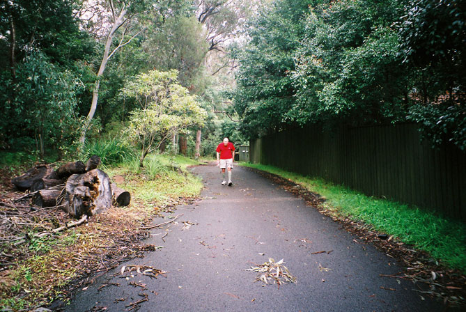 northbridge-street-bush-xst.jpg