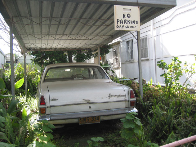 rozelle-car-parking-in-shrubs-uv.jpg