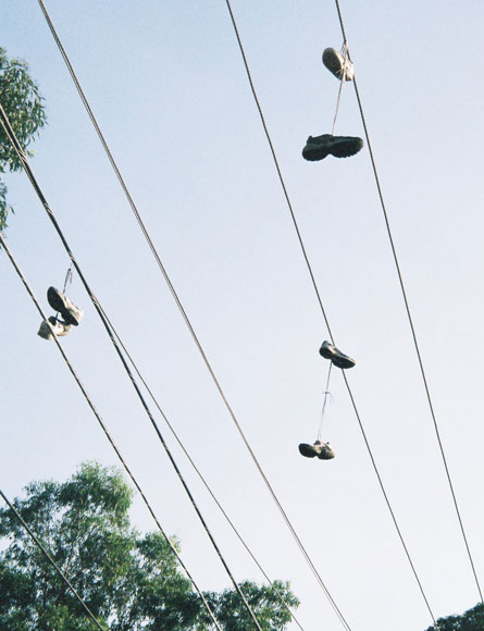 shalvey-tennis-shoes-power-line-w.jpg