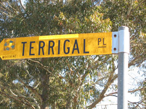 street-themes-beaches-terrigal-kbch.jpg