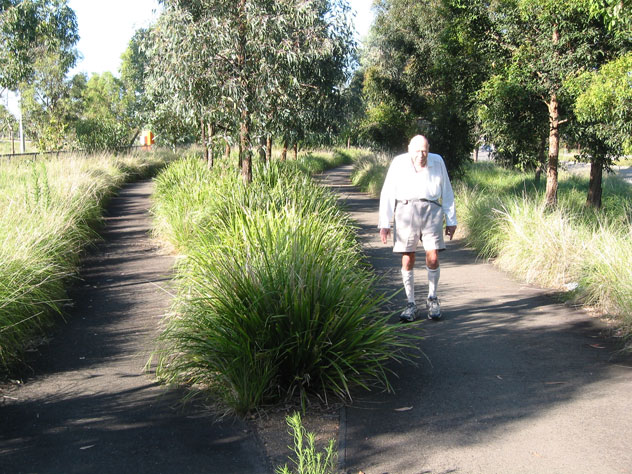 sydney-olympic-park-path-divided-w.jpg