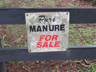 collections-oxymorons-manure-pure-coxy.jpg