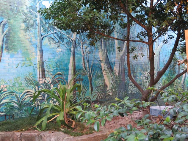 darlinghurst-real-and-painted-trees-up.jpg