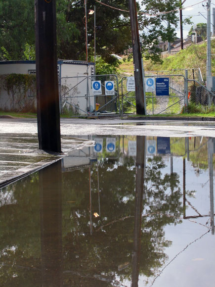dulwich-hill-water-reflections-xw.jpg