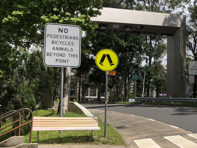 north-sydney-failure-no-animals-bicycles.jpg